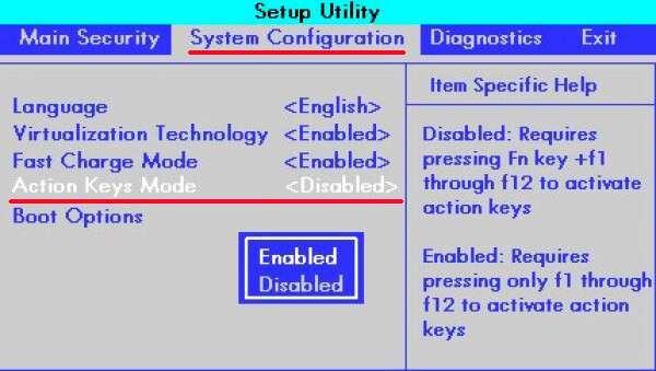 Як відключити кнопку Fn на всіх моделях ноутбуків